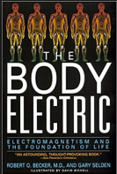 The Body ElectricScreen Shot 2018-04-28 at 12.44.05 PM